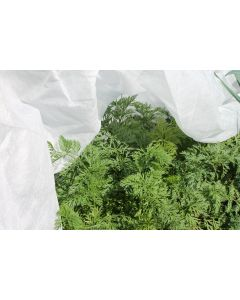 Gardening Naturally 30g Fleece Protection 2 x 5m