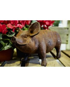 Cast Iron Standing Piglet Statue in Rust